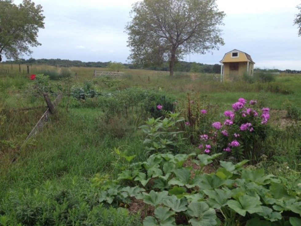 Join Crazy Rooster Farm for the first Permaculture Jamboree